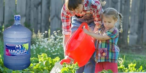 Предложение для садоводов – любителей, дачников, крупных сельскохозяйственных предприятий