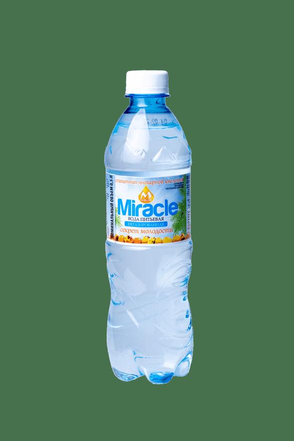 """Вода негазированная """"Miracle"""" обогащенная янтарной кислотой Isolife Aqua Miracle 0,5л"""